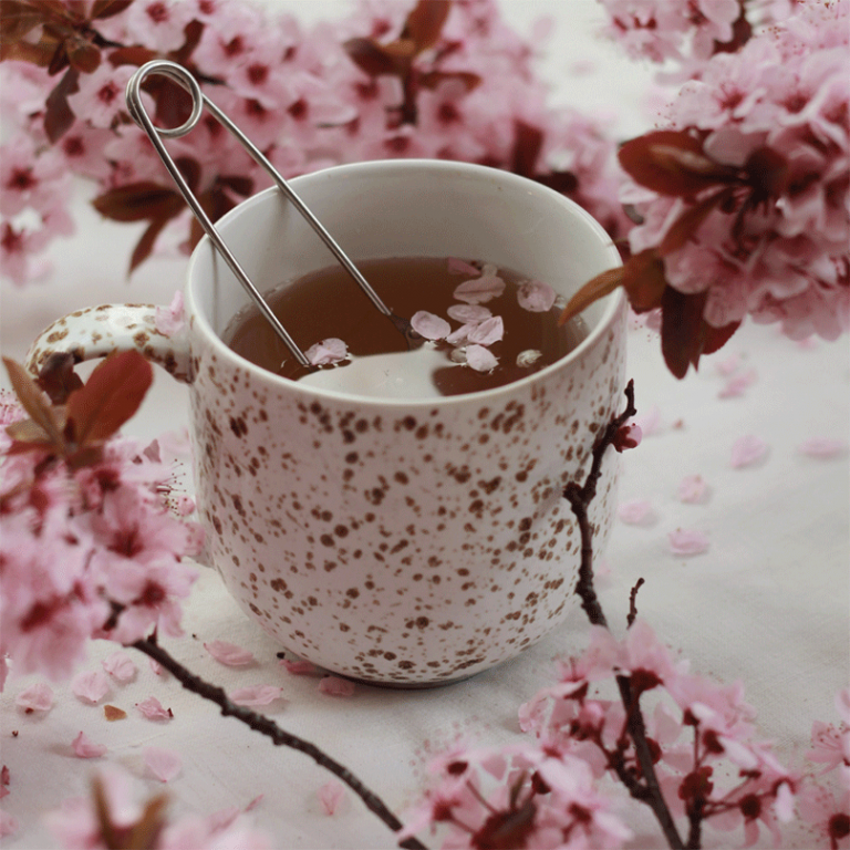 image of cup with herbal tea and cherry blossom flowers