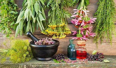 Herbal Medicine Therapy Dublin
